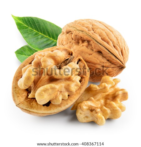 Walnuts with leaves isolated on white. With clipping path. - stock photo