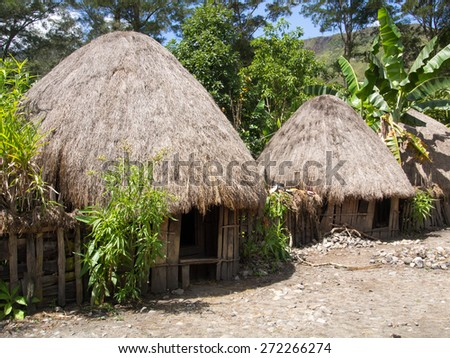 Wamena, Indonesia - January 23, 2015: Cottage covered with dry leaves of banana in the Dani tribe village.