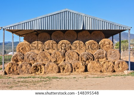 Warehouse barn with bales of hay grass stored in a symmetrical pile