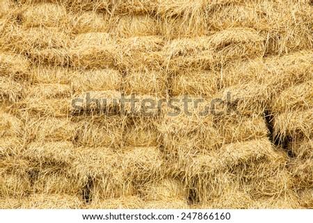 warehouse of hay - stock photo