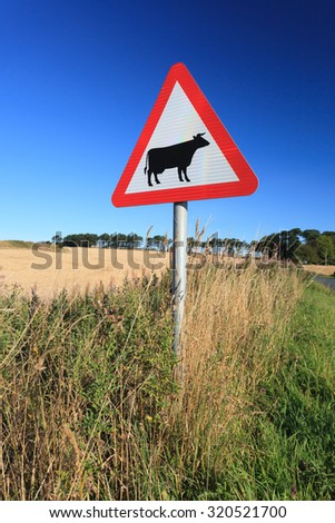 Waring sign for cow in  the country side in Aberdeen, Scotland UK - stock photo