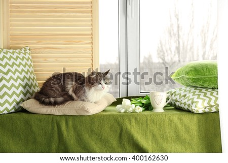 Warm and cozy window seat with a cat on cushions.