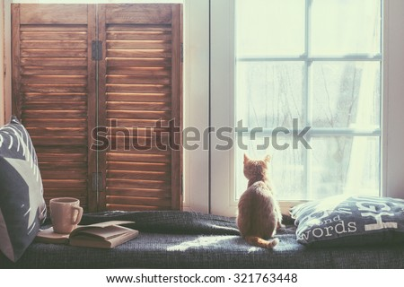 Warm And Cozy Window Seat With Cushions And A Opened Book, Light Through  Vintage Shutters