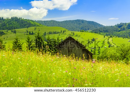 Warm colored landscape with mountain hut  Mountain landscape with an old wooden hut on a green meadow, warmed up by the hot summer sun, the rich Carpathian forest and hills in background.