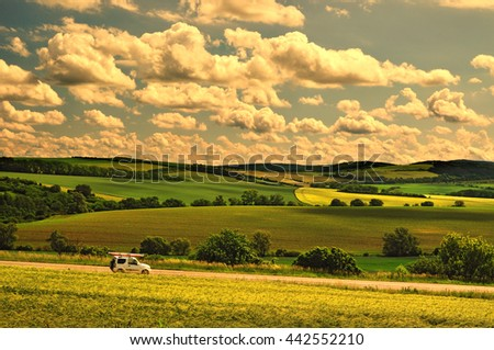 Warm colors of hot summer landscape - stock photo