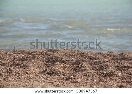 warm sand and summer sea