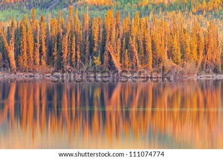 Warm sunset light reflections on calm surface of boreal forest wilderness pond, Twin Lakes, Yukon Territory, Canada - stock photo