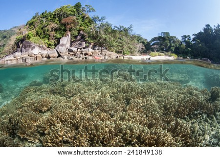 Warm, tropical water bathes the shore of a remote island in the Mergui Archipelago off the coast of Myanmar. These beautiful islands in the Andaman Sea are rarely visited. - stock photo