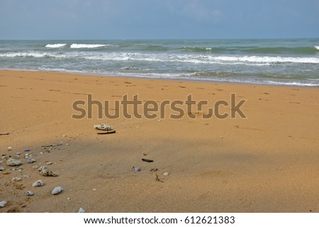 Washed ashore, Sea  and sand  in the morning,Khao Lak, Phangnga, Southern of Thailand, Andaman sea