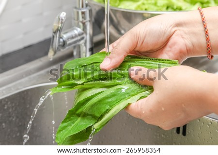 Washing fresh vegetable for cooking - stock photo