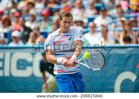 WASHINGTON  AUGUST 3: Vasek Pospisil falls to fellow Canadian Milos Raonic in the men's finals at the Citi Open tennis tournament on August 3, 2014 in Washington DC - stock photo