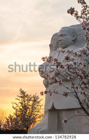 WASHINGTON DC - APRIL 8: The monument to Dr Martin Luther King in Washington DC surrounded by cherry blossoms on April 8, 2013. The memorial opened to the public on August 22, 2011. - stock photo