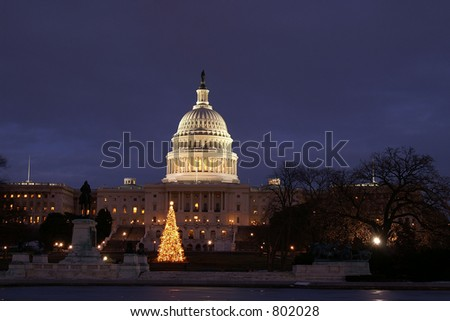 Washington DC Capital Christmas Tree Horizontal