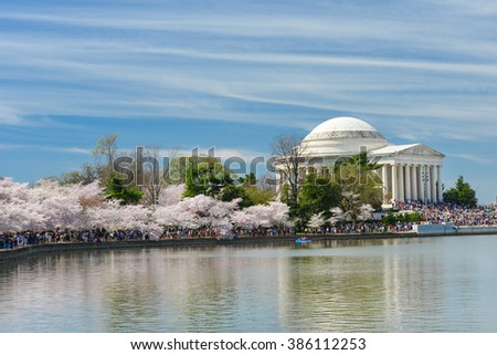 Washington DC in Spring - Jefferson Memorial during Cherry Blossom Festival