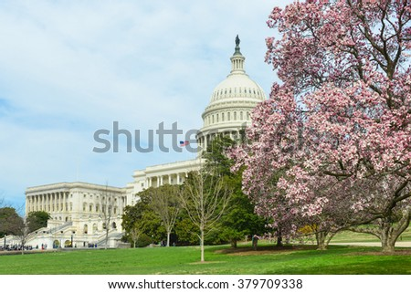 Washington DC in Spring - The Capitol - stock photo