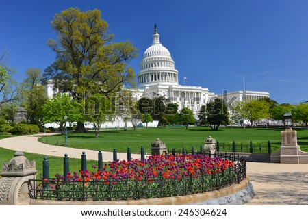 Washington DC in Spring - US Capitol and tulips - stock photo