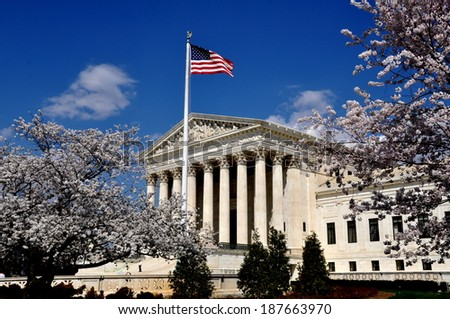 Washington, DC:  The Supreme Court of the United States framed by floweirng Japanese cherry trees on First Street - stock photo