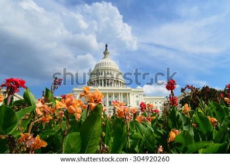 Washington DC, US Capitol Building - stock photo