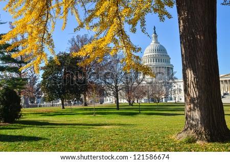 Washington DC, US Capitol Building in autumn season - stock photo