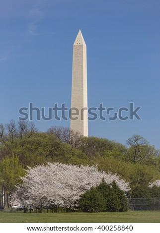 WASHINGTON, DC, USA - MARCH 30, 2016: Washington Monument. - stock photo