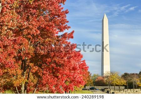 Washington DC - Washington Monument from Constitution Gardens in Autumn  - stock photo