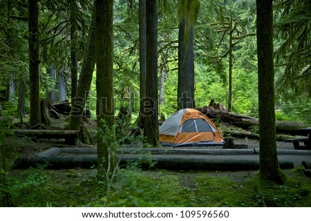 Washington, USA Forest Camping and Tent in the Middle. Outdoor Photo Collection. - stock photo