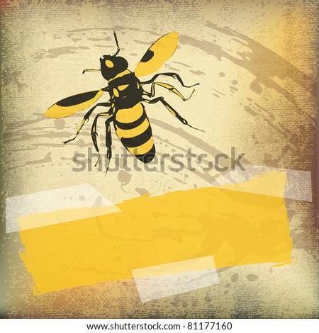 Wasp Background - stock photo