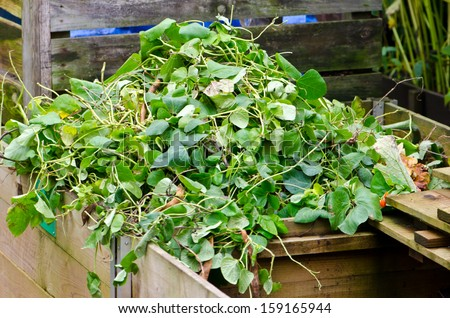 waste garden - stock photo