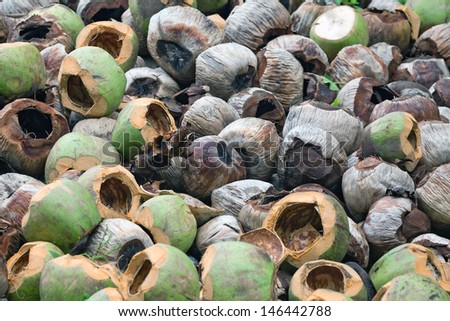 Waste of coconut husks. - stock photo