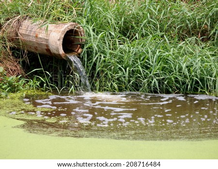 waste water running slow from a concrete pipeline direct onto a natural pond with green grass on the bank and light green small mosquito fern on the water surface - stock photo