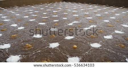 Pond stock photos royalty free images vectors for Design of oxidation pond nptel