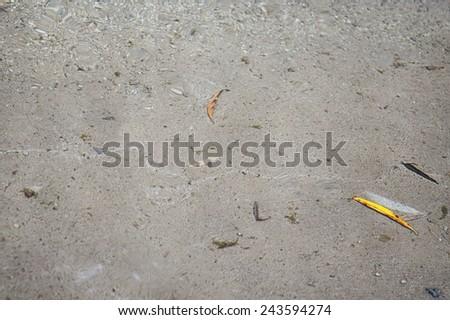 water bottom  - stock photo