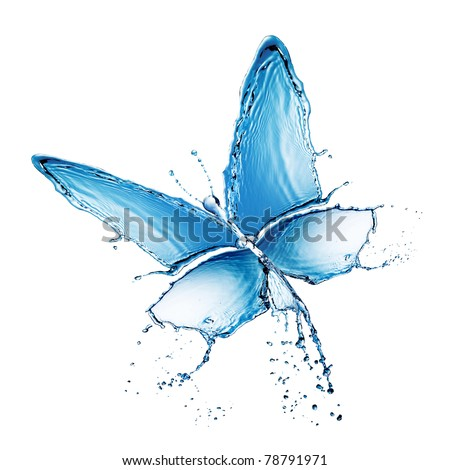 water butterfly - stock photo