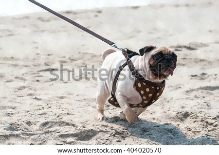 Water color sketch of happy pug dog racing through the sand and looking to the camera. - stock photo