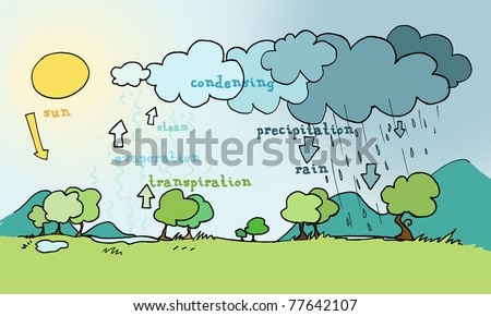 Water cycle stock images royalty free images vectors shutterstock water cycle explicative plan ink and digital colors ccuart Images