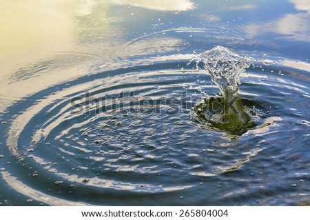 water drop causing the ripples - stock photo