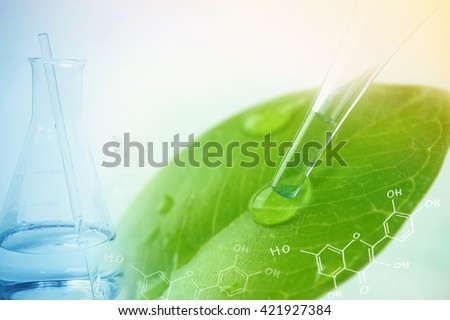 water drop from leaf and laboratory for natural chemistry concept - stock photo