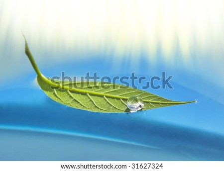 Water drop on floating leaf in water - stock photo