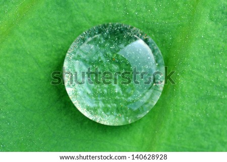 Water drop on lotus leaf - stock photo