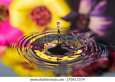water drop on water reflection of colorful flowers - stock photo