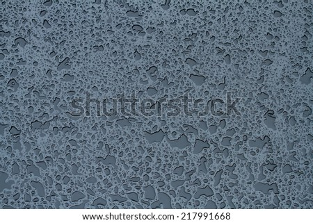Water droplets  - stock photo
