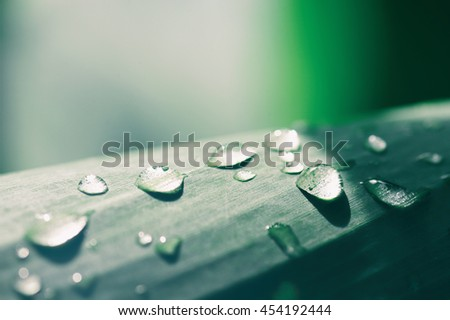 Water droplets on green leaf, Rain drops with sun rays. beautiful natural background. Vintage tone - stock photo