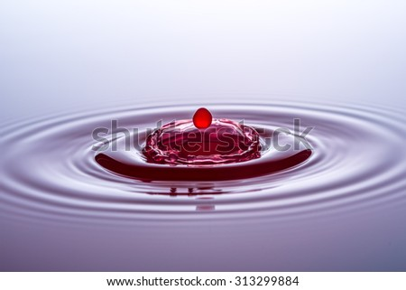 Water drops, drops, red - stock photo
