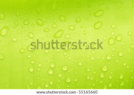 Water drops on banana leaf - stock photo