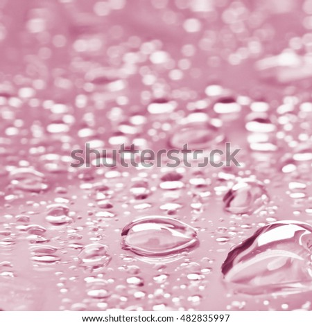 Water drops on Pink Background