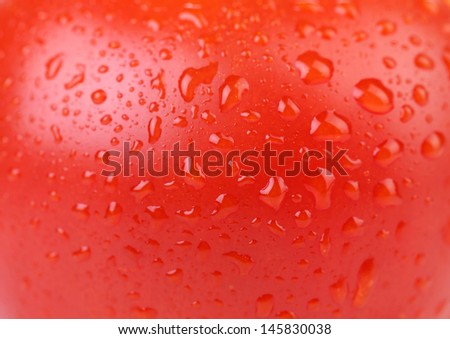 Water drops on red tomato. Close up. - stock photo