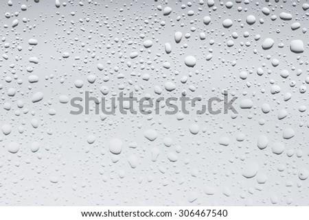 Water Drops./ Water Drops.  - stock photo