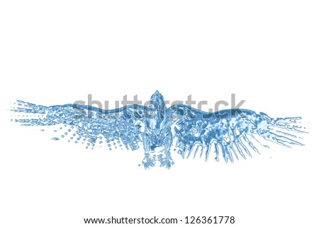 Water eagle - stock photo