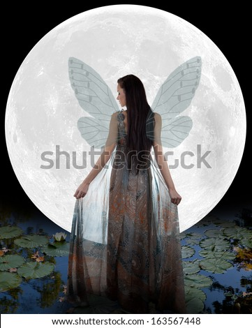 Water fairy walking into the moon - stock photo