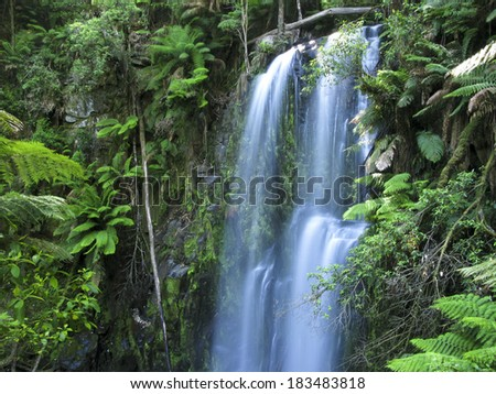 Water fall in forest